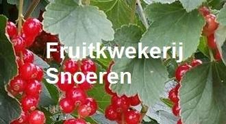 Fruitkwekerij Snoeren